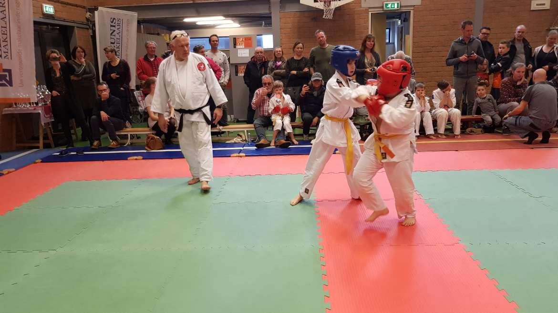 Traditionele Vechtsporten