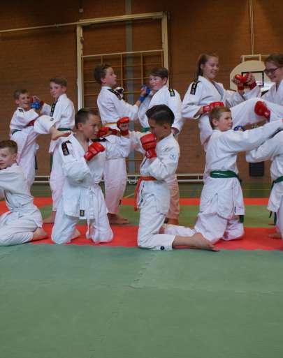 Jiu Jitsu woensdag 16.45 Tholen
